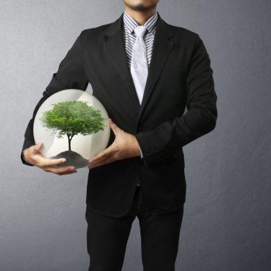 Gestión del Medio Ambiente  ISO – 14001